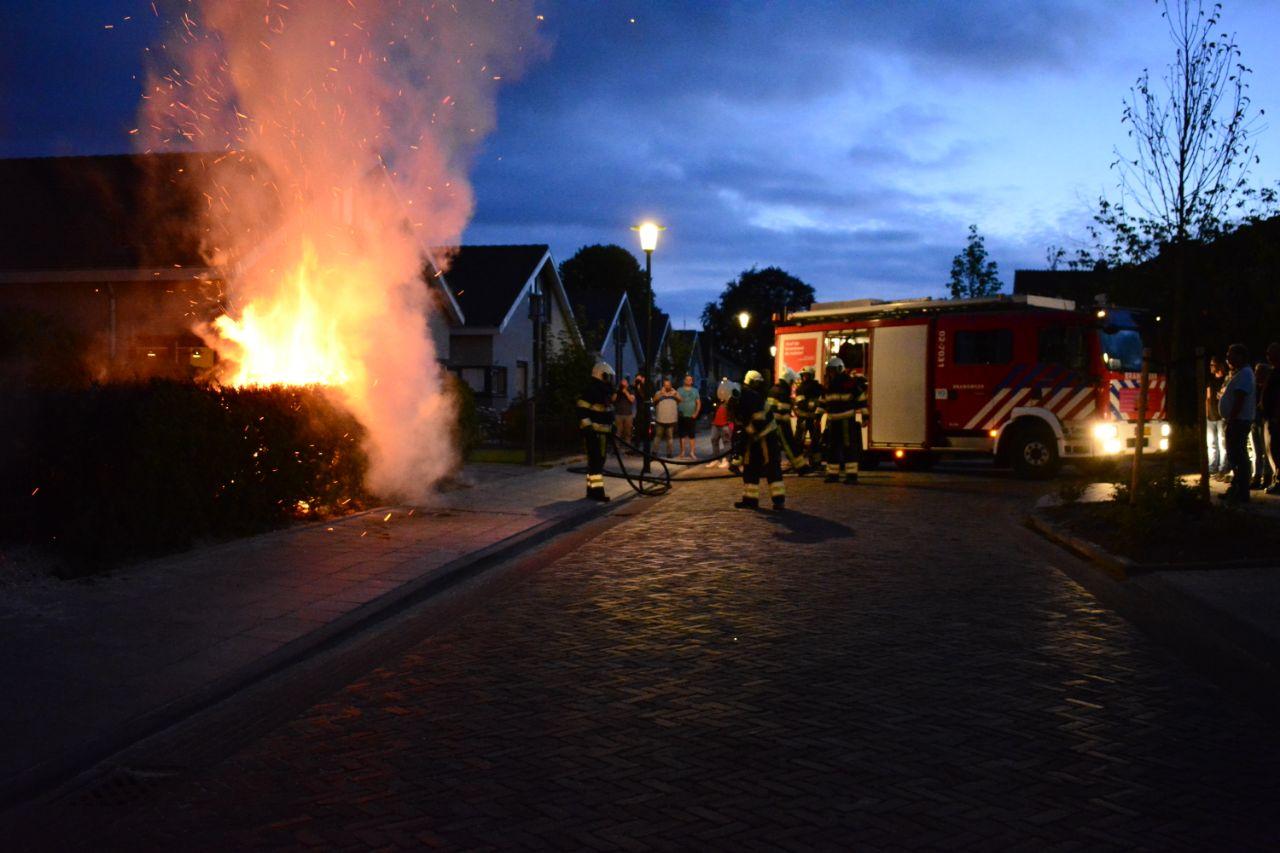 Flinke Coniferenbrand aan de houtlaan in Drachten