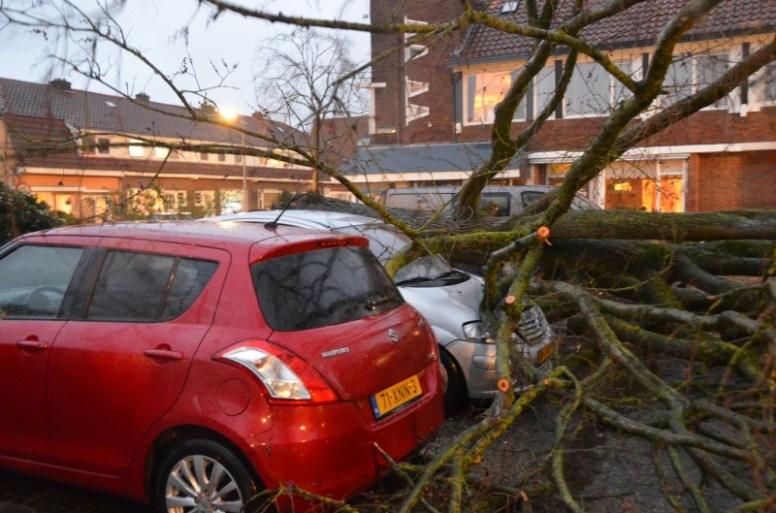 Terugblik: storm Ciara raast over Friesland