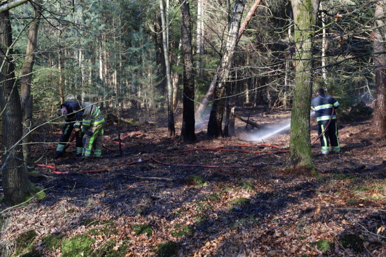 Update stuk bos in de brand aan de beakendyk in bakkenveen