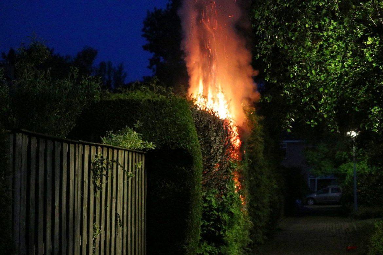 Buurtbewoonster ontdekt coniferen brand belt de brandweer in Drachten